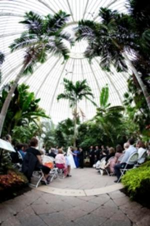 Wedding Ceremony Picture of Buffalo and Erie County Botanical