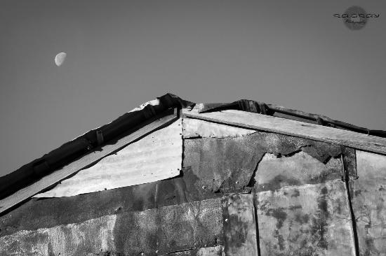 Murski Homestead B&B照片