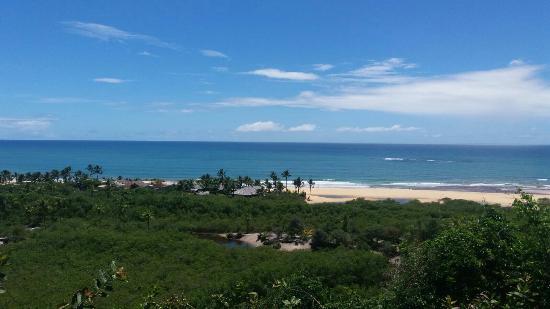 Nativos Beach: IMG-20160201-WA0070_large.jpg