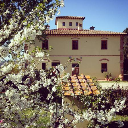 Peccioli, Italie : Spring in I Moricci