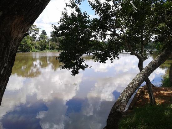 Aracoiaba Da Serra, SP: Sombra deliciosa