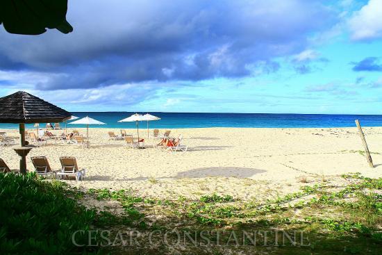 Sur La Plage: Sur La Plage Villas- Private Estate on the Beach