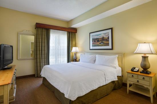 Homewood Suites by Hilton St. Petersburg Clearwater: King Suite