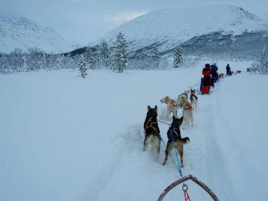 Troms, Norveç: photo2.jpg