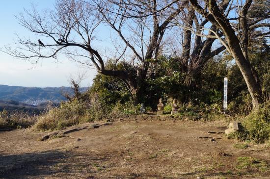 Mt. Kinubari