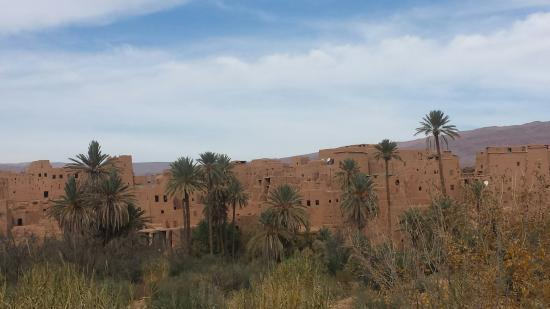 Marrakech-Tensift-El Haouz Region, Marocko: 20151129_105905_large.jpg