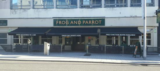 Frog & Parrot