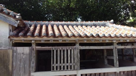 Kumejima-cho, اليابان: Barn for livestock