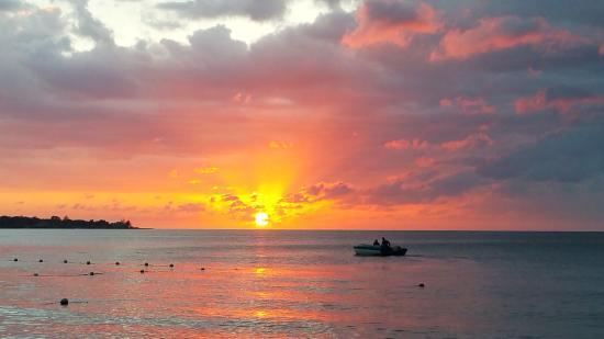 Sunrise Club-billede