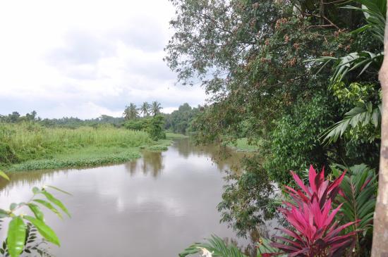 Katunayake Εικόνα
