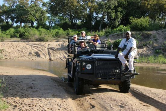 Londolozi Private Game Reserve ภาพถ่าย