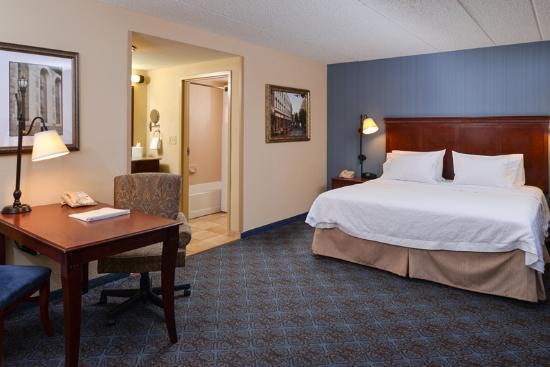 Hampton Inn & Suites Salisbury/Fruitland: King Studio Suite