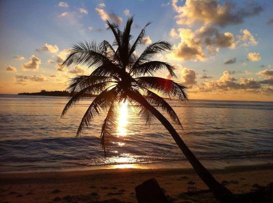Thulusdhoo Island : photo0.jpg