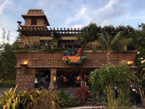 Rainforest Cafe Retail Shopping Village