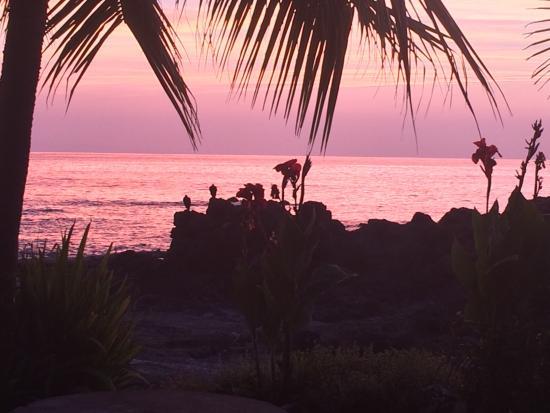 Montezuma, Kosta Rika: photo0.jpg