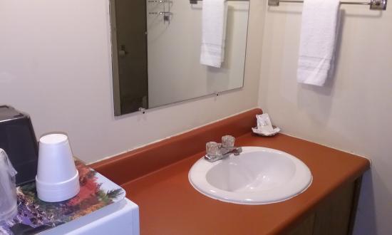 Wellsboro, Pensylwania: Cabin Bathroom