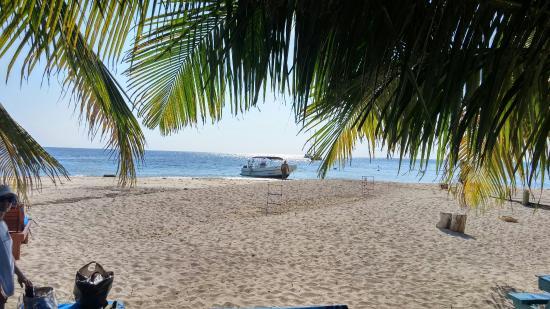 ปลาเซนเซีย, เบลีซ: Had a wonderful time snorkeling and relaxing at Ranguana Caye