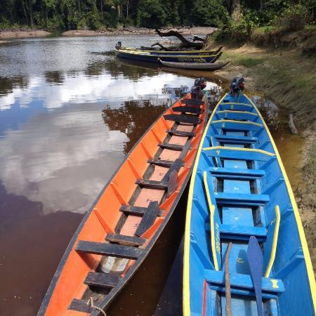 Sipaliwini District, Surinam: de korjaaltjes van Menimi