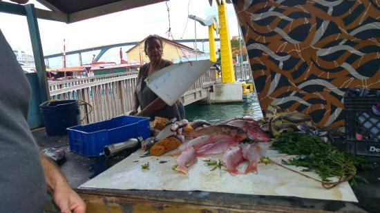 Punda: freshly caught fish for sale