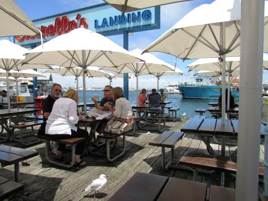 Fremantle, ออสเตรเลีย: A fish and chip lunch in the Fishing Boat Harbour