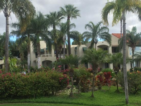 Palms at Wailea: photo1.jpg