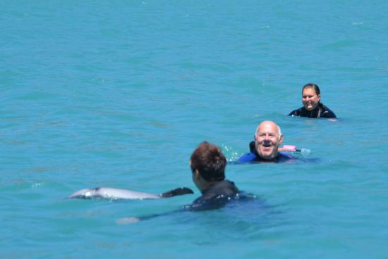 Swim with Dolphins Akaroa - Black Cat Cruises: Me swimming with dolphin