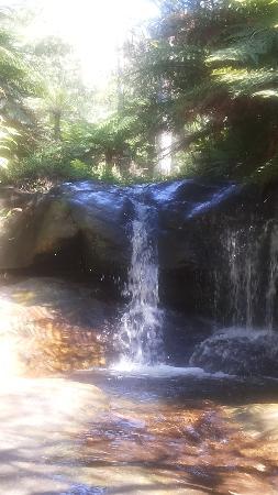 Leura, Australien: Lower cascades