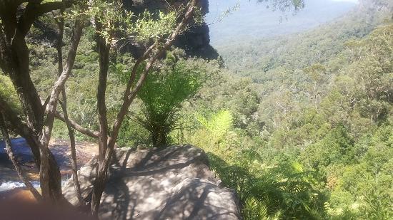 Leura, Australia: Just a view