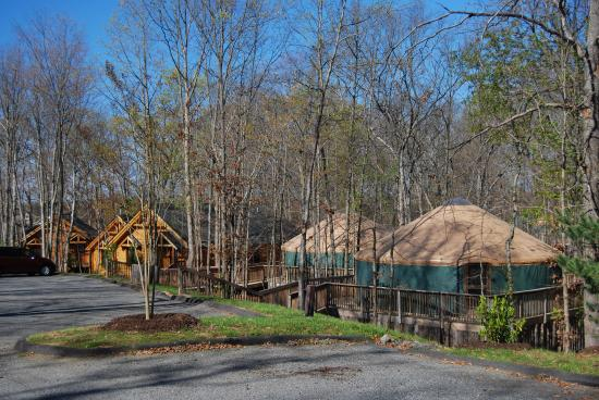 Gordonsville, Wirginia: 3 bedroom cabins and yurts