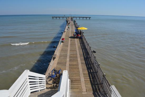 Good haul picture of galveston fishing pier galveston for Galveston jetty fishing report