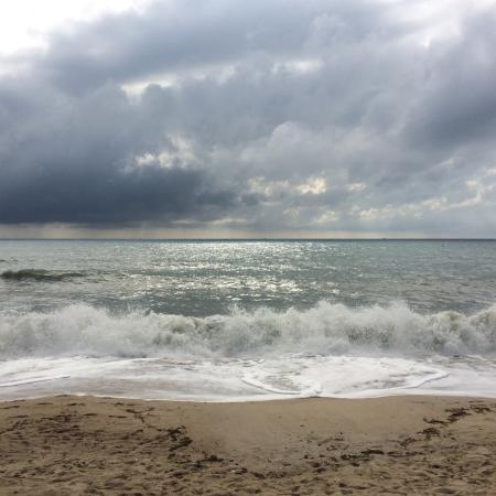 Coconut Beach Resort : photo1.jpg