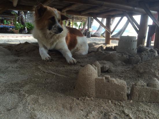 Coconut Beach Resort : photo2.jpg
