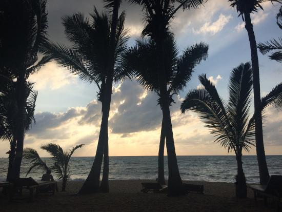 Coconut Beach Resort : photo4.jpg