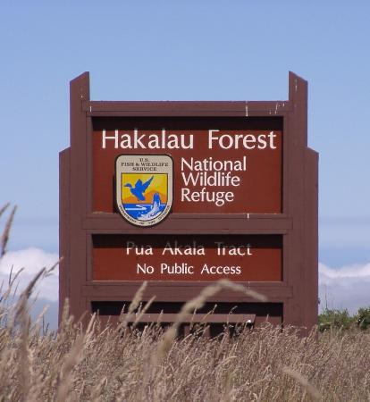 Hakalau Wildlife Refuge