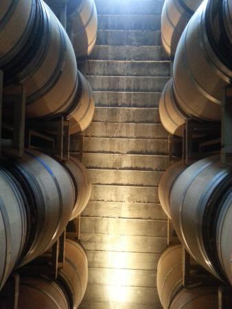 Healdsburg, Californien: in the barrel room at Stryker Sonoma