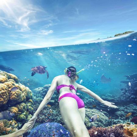 Samoa: Fagamalo Underwater