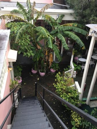 New Orleans Guest House: photo2.jpg