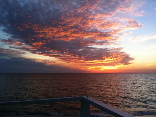 Pearl Beach Inn: this shot was outside our ropm on the bbq deck