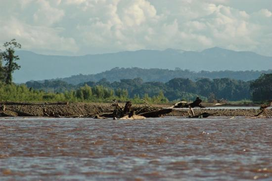 タンボパタ国立保護地区 Picture