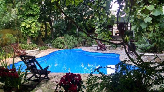 Casa Quetzal : Alberca