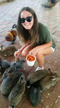 Dunsborough, Australie : Snapchat-3834442451337122139_large.jpg
