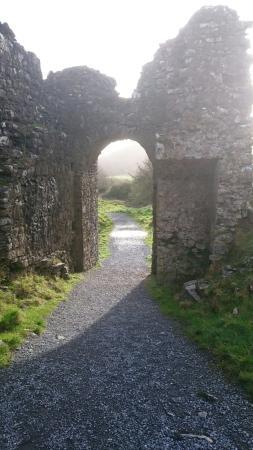 Portlaoise, İrlanda: DSC_0086_large.jpg