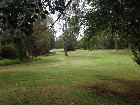 Banksia Park