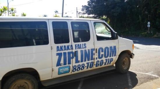 Honomu, Hawaï: Zipline 'mobile' at Akaka Falls, Hawaii