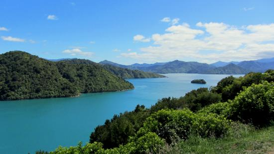 Picton, Nueva Zelanda: Victoria Domain - Harbour View Track