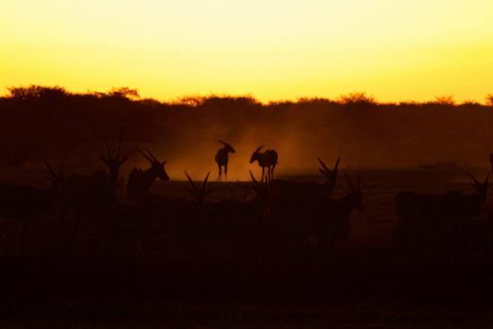 Serowe, Μποτσουάνα: Last light