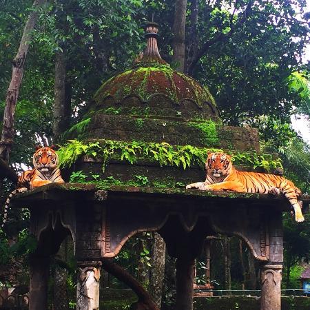 taman safari indonesia ii prigen picture of taman safari prigen rh tripadvisor com my