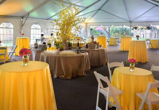 Trumbull, CT: Outdoor Tent