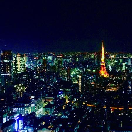 夕日頃2 - Picture of Tokyo City View Observation Deck (Roppongihills), Minato - ...
