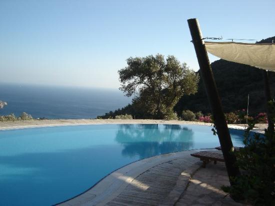 Mesudiye, Turquía: Pool